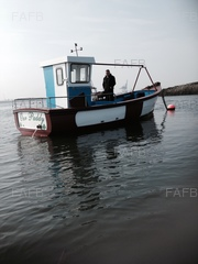 Plymouth pilot 24 ft - Our paddy - ID:77122