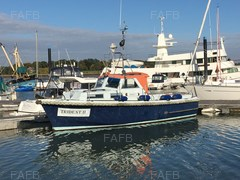 Mitchell 31 Sea Angler - Trident  - ID:74166