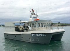 Gemini Workboats GF10 - Dame de Poisson - ID:81830