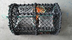 Crab / lobster pots for sale - ID:69961