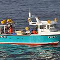 Seahawk Workboats K31 fastcatch - picture 6