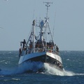 Trawler, Forbes Sandhaven - picture 2