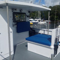 Cougar Catamaran 10m Outboard. - picture 3