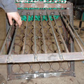 connolly shellfish sorter - picture 9