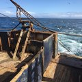 Trawler, Gerards of Arbroath - picture 6