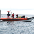red bay stormforce rib - picture 9